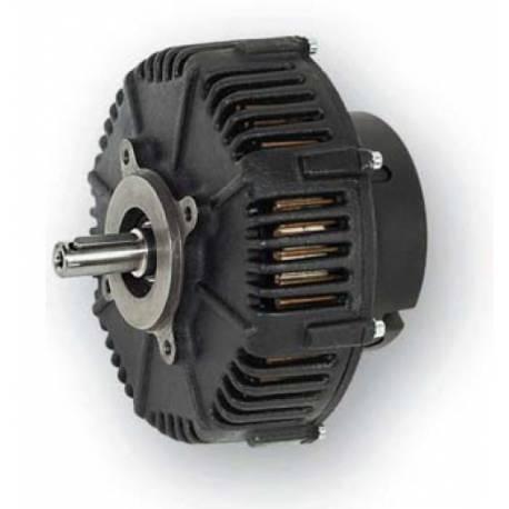 Heinzmann DC motor PMG 132
