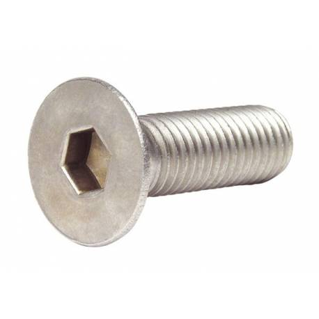 M08 x 30 FHC zinc screw